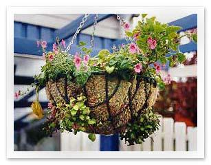 Moss lined basket