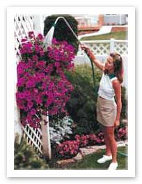 Watering hanging basket
