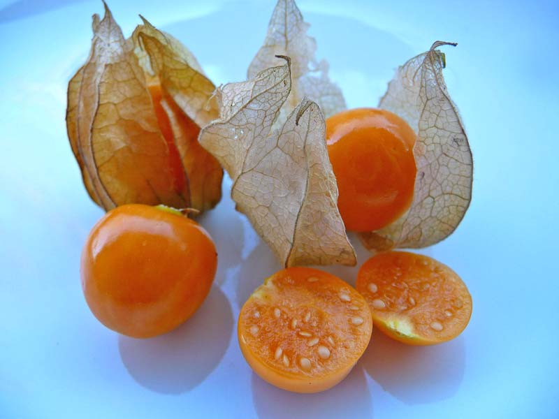 Physalis peruviana - Cape Gooseberry - these tasty berries can be eaten fresh, they also make great jam.  photo by 3268Zauber