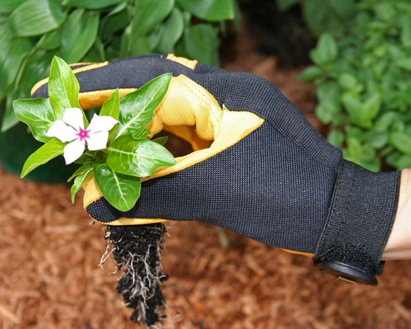 Soft Touch Garden Gloves by Gold Leaf of the UK