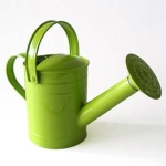 Twigz  1.5L  Kids Watering Can