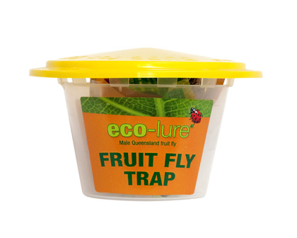 Eco-Lure Male Fruit Fly Trap
