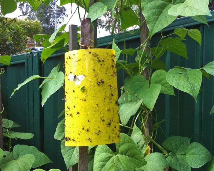 In use in the garden - you can see how effective they are.
