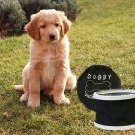 Doggy Bucket Black - Bucket ina Bag