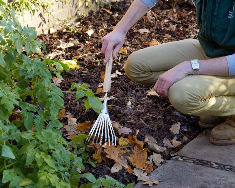 Mid handled shrub rake from Burgon and Ball