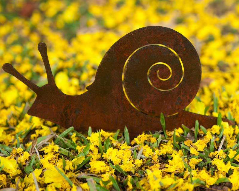 Snail decor