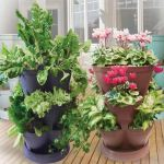 Stack-A-Pot Maxi - self-watering