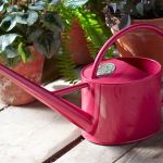 Indoor 1.7 litre Watering Can - Sophie Conran