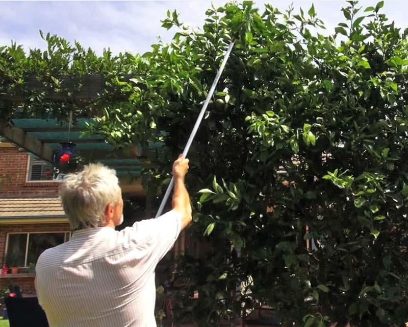 Cut & Hold Secateurs (Long Reach) Professional Kamaki
