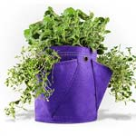 Bloombagz Three Pocket Herb Planter Bag