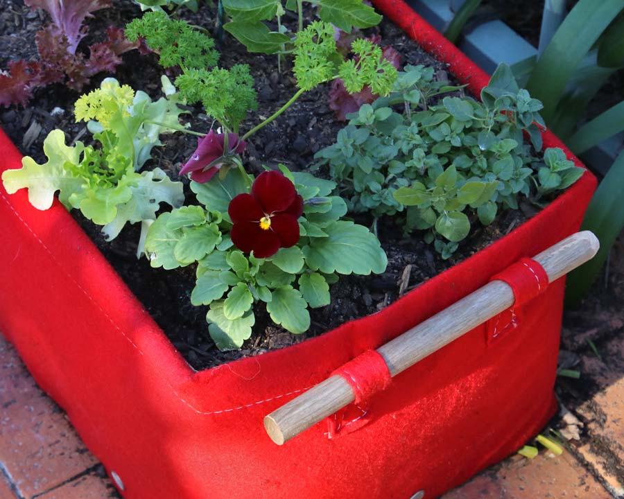 Bloombagz 45l Raised  planted bed - perfect for small vegetables, herbs and flowers