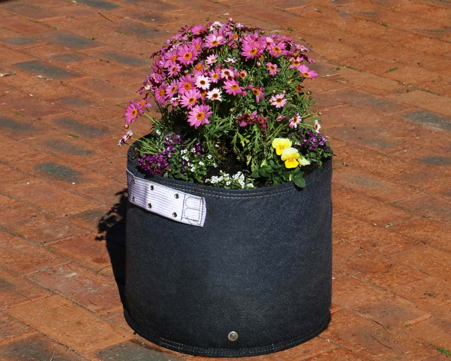 30 litre Bloombagz in Charcoal Grey