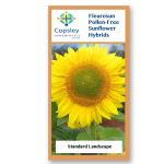 Landscape FleuroSun Sunflower Seeds