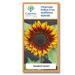 Sonnet FleuroSun Sunflower Seeds