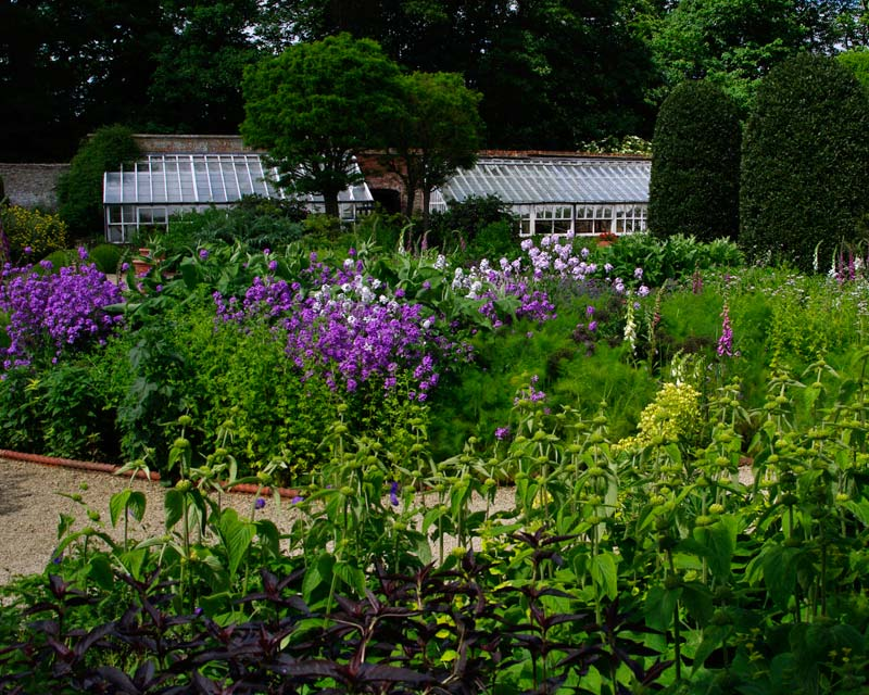 Flower garden at Losely Park