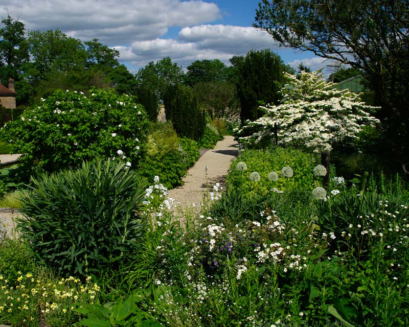 The White Garden at Losely Park