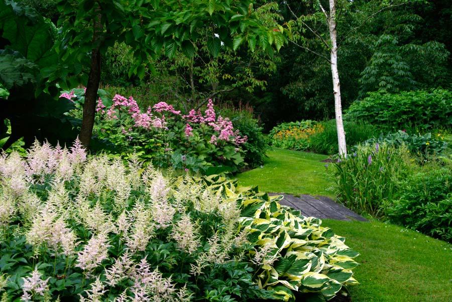 Savill Garden - The Hidden Garden -