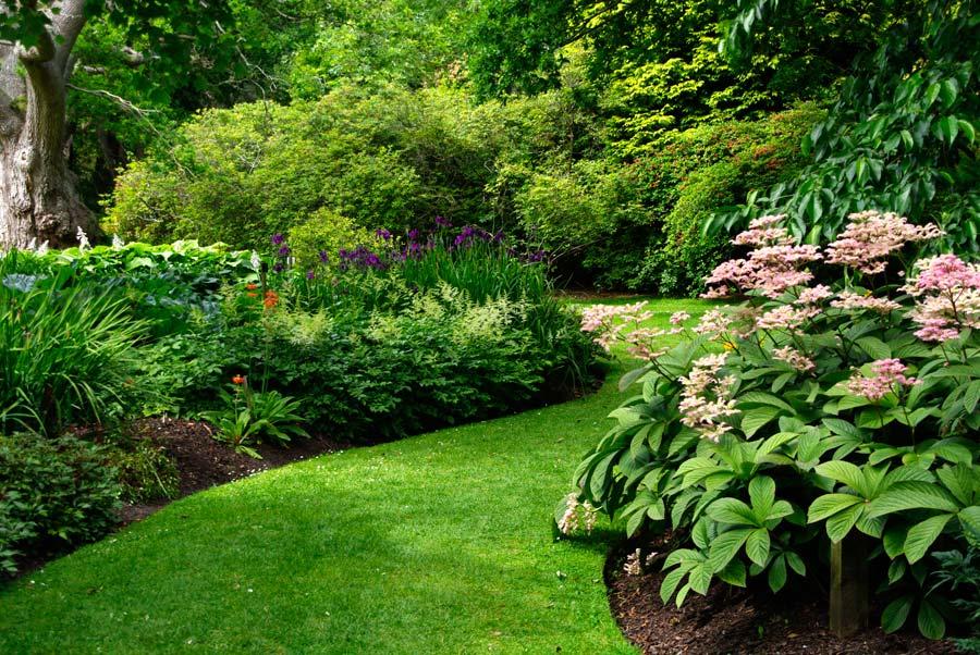 Savill Garden - The Hidden Garden