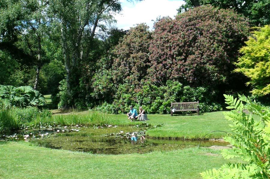 Savill Gardens - lawns by lake