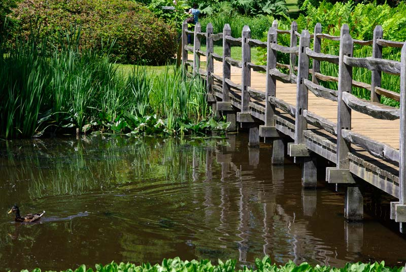 Savill Gardens - Middle Bridge