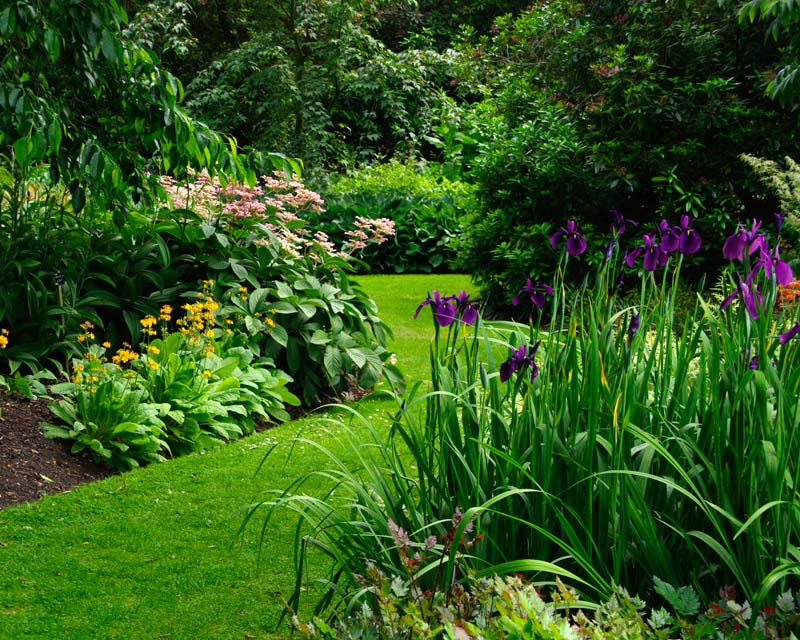 Savill Gardens - beautifully maintained flower beds and lawns
