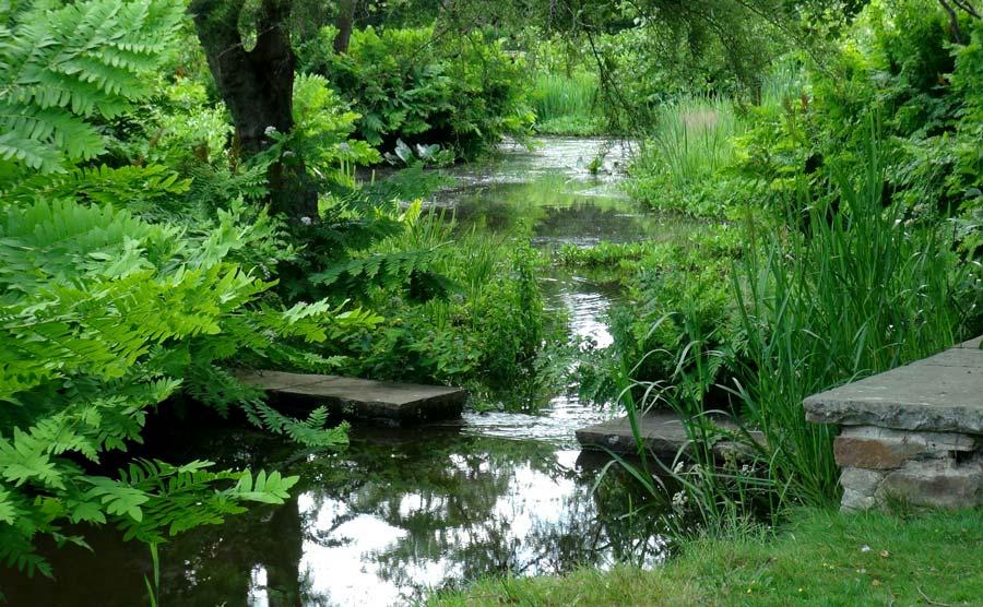 Savill Gardens - Stream through the gardens