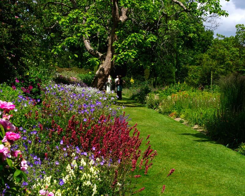 Savill Gardens Summer Border
