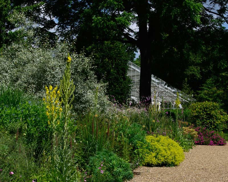 Savill Gardens Summer Dry Garden