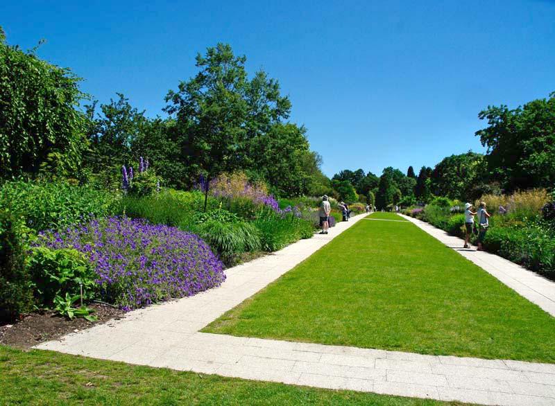 The Centenary Border - Sir Harold Hillier Gardens
