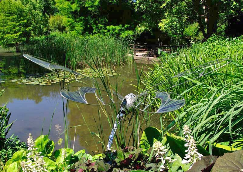 Dragonfly sculpture hovers next the pond at Sir Harold Hillier Gardens
