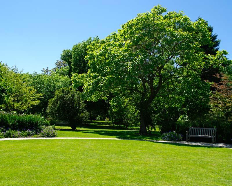 Ten Acres West - Sir Harold Hillier Gardens