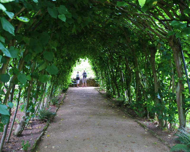 Green tunnel at Hidcote