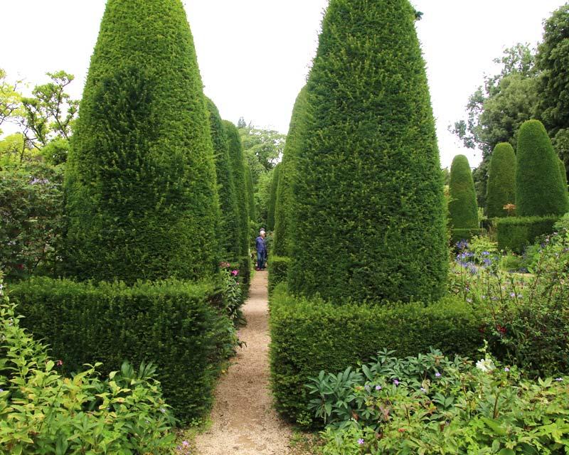 Hidcote Pillar Garden