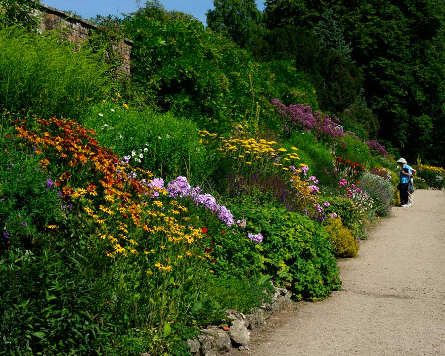 Summer borders - Waterperry Gardens