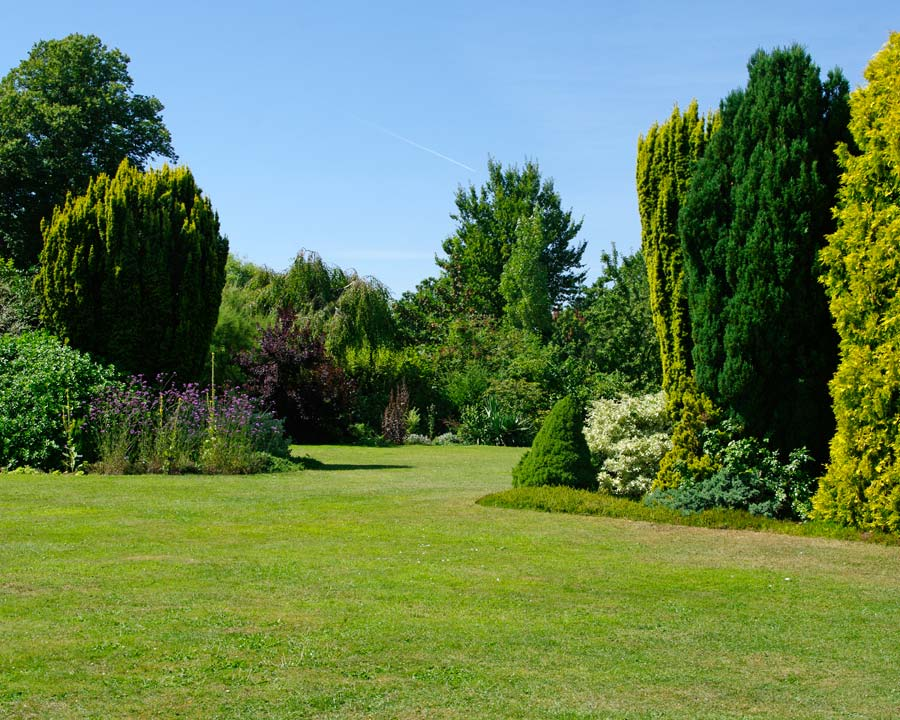 Waterperry Gardens - conifer beds