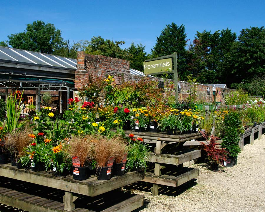 Waterperry Plant Centre and shop have a large selection of plants and garden tools