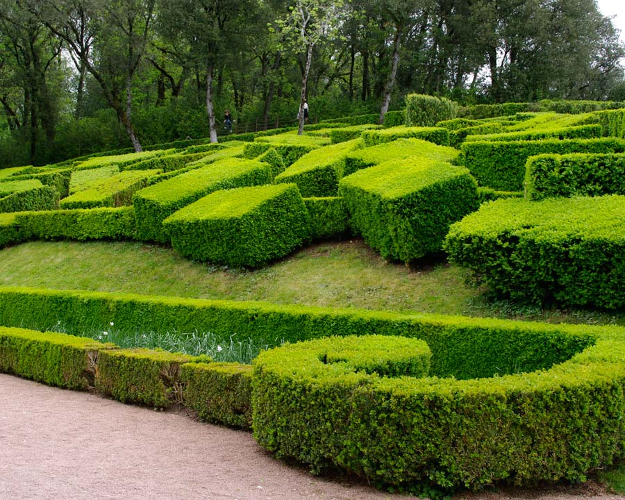 Topiary as art - perhaps  - The Gardens of Marqueyssac