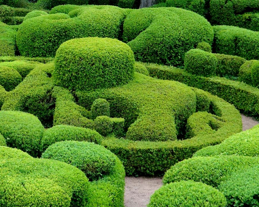 Sometimes just convoluted  - The Gardens of Marqueyssac