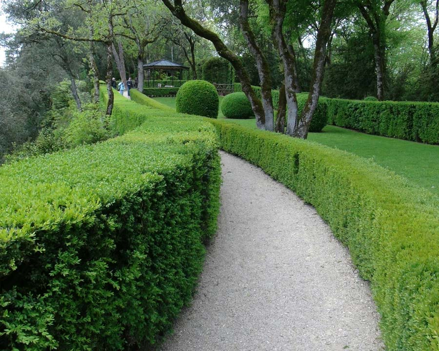 Pathways, box hedges and great views - that is Marqueyssac.