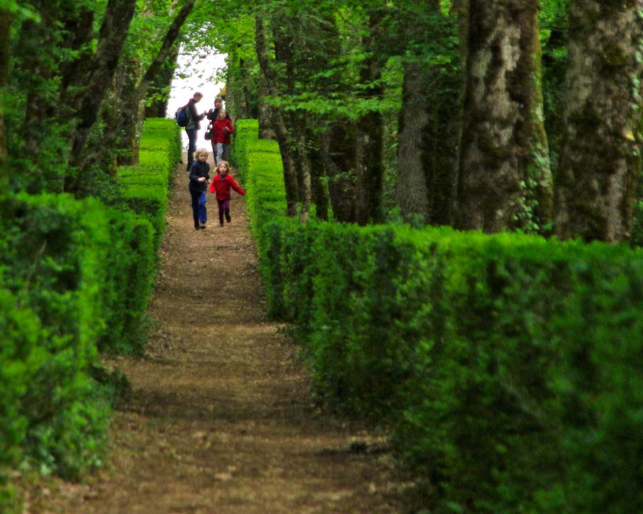 6 kilometers of woodland walks - The Gardens of Marqueyssac