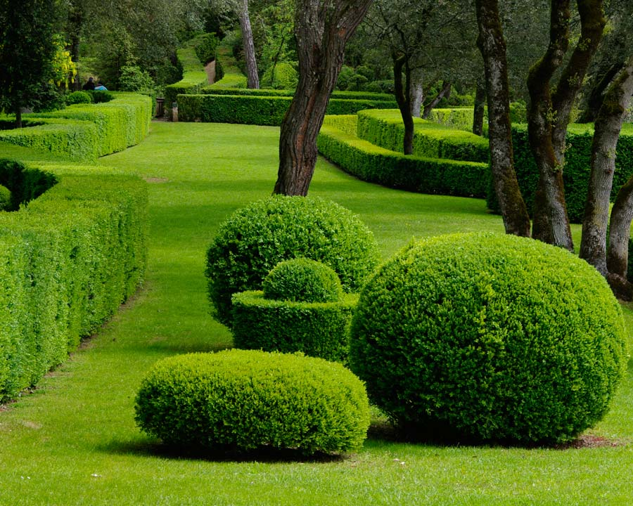 Topiary statements everywhere you look - Marqueyssac