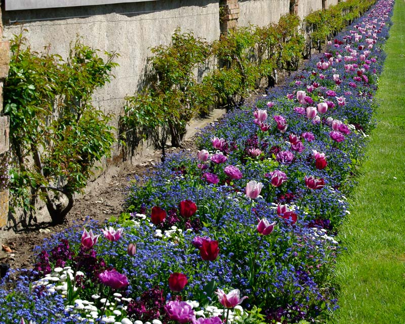 Garden Borders Inspiration : Gardens of the world chateau de chenonceau