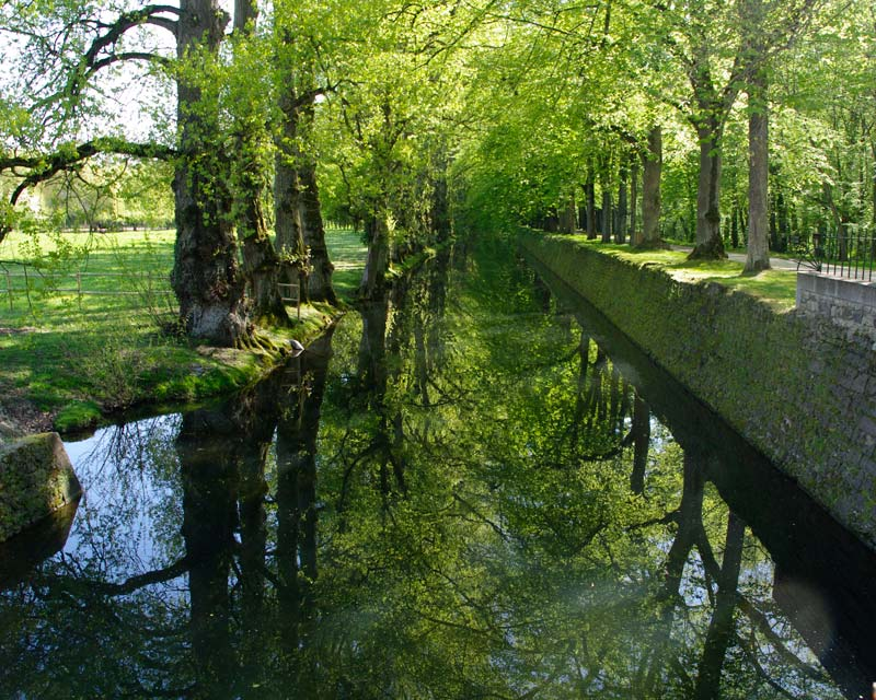 Even the moat is pretty -  - Chateau de Chenonceau