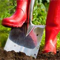 How to Choose the Right Garden Digging Tools