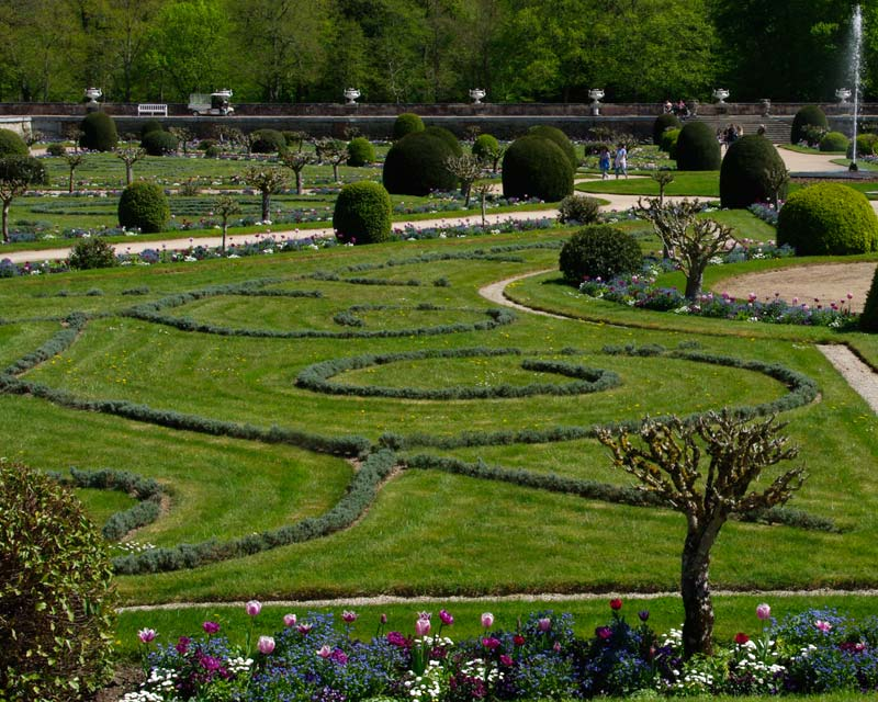 Santolina chamaecyparissus - as used for low spiralling motifs within the lawns in Diane de Poitier's garden at Chateau Chenonceau, France.