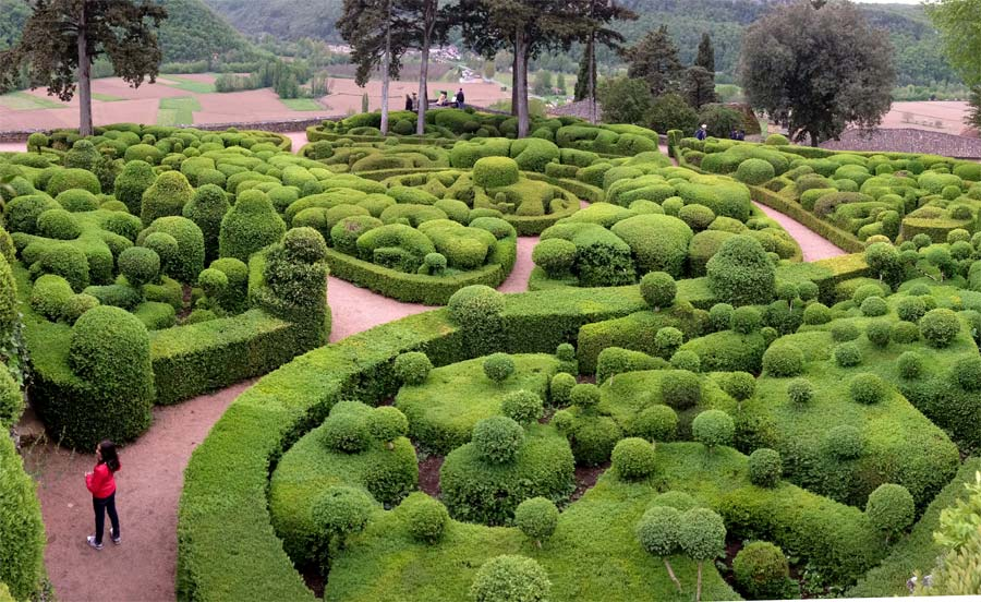 But the ultimate use of Buxus sempervirens has to be at Chateau Marqueyssac in the Dordogne, France