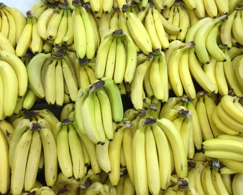 Delicious Bananas - perfect for breakfast or a snack