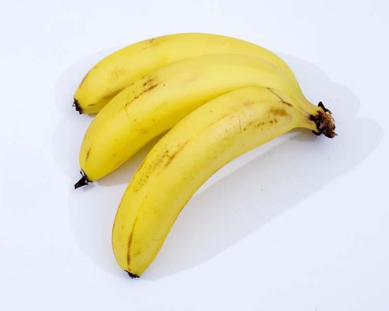 Musa acuminata - the common, edible banana