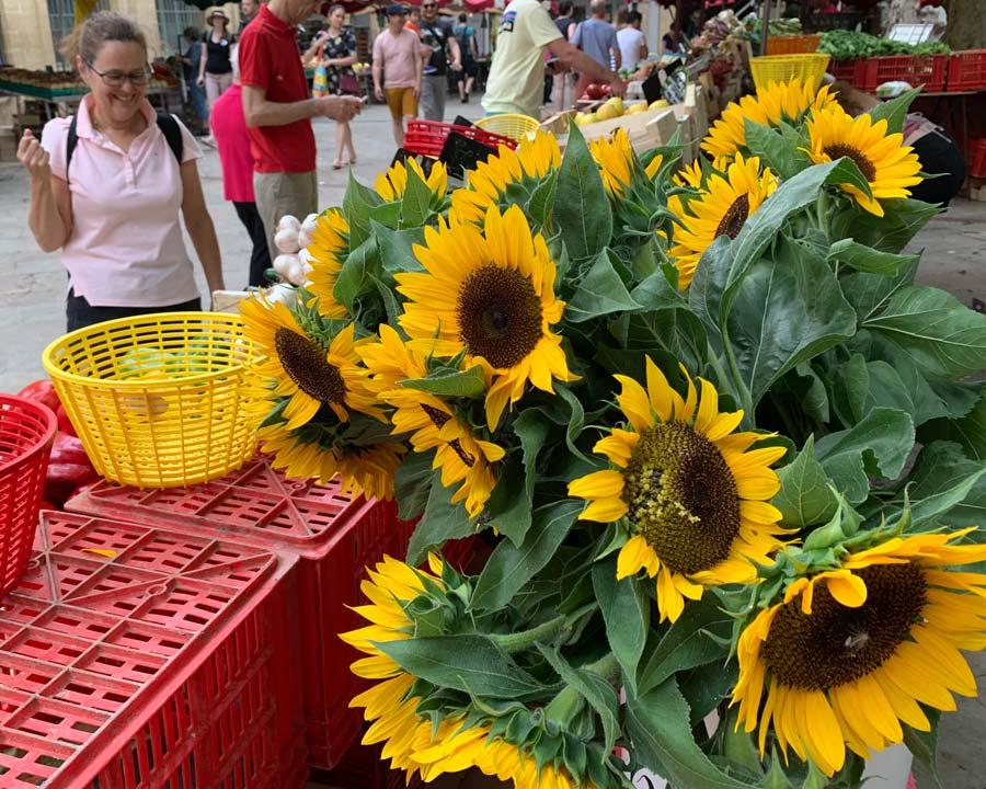 Helianthus annus in Aix-en-Provence street market