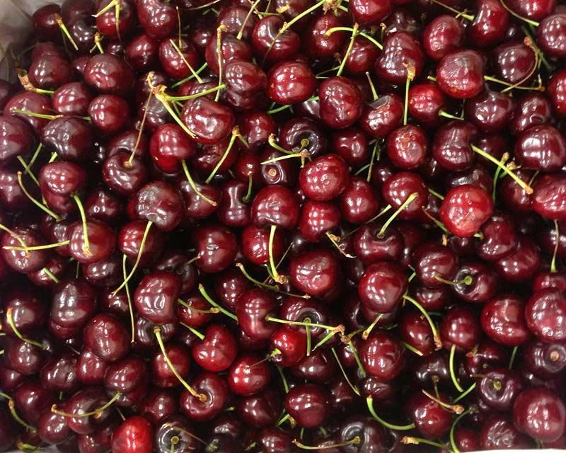 Prunus avium, cherries, sweet and delicious